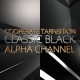 Corporate Transition Classic Black 4 Pack