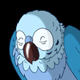 Blue Parrot Wakes Up