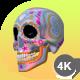 Sugar Candy Skulls - 12 Clips + 6 Transitions
