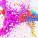 Colorful Splash Logo
