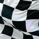 Formula One Flag Waving, Loop