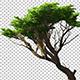3D Object Tree