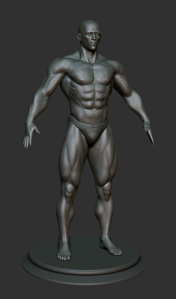 Muscular Man  Zbrush Sculpt