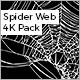Spider Web Pack