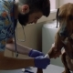 Vet Glues the Paw of a Dog with Scotch Tape