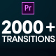 Modern Transitions | For Premiere PRO