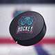 Hockey Logo Reveal 3