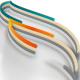 Minimal Colors Logo Intro