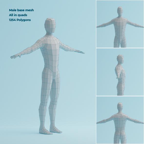 Low Poly Base Mesh Male Body