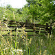 Wooden Gate to the Orchard