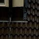 Roof and Rain