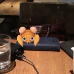 福岡でポケモンGOやっていたら、ココマイスターの長財布にパラスが乗っかってきた