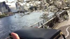 ココマイスター 長財布 ロンドンブライドル・グラディアトゥール 天王洲アイル TYハーバー 桜