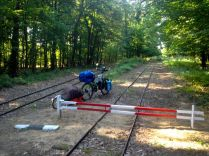crossing the forest on a hiking trail along this narrow gauge railroad