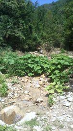 Jajce-Mountain-Travnik09