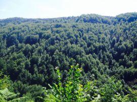 Jajce-Mountain-Travnik27