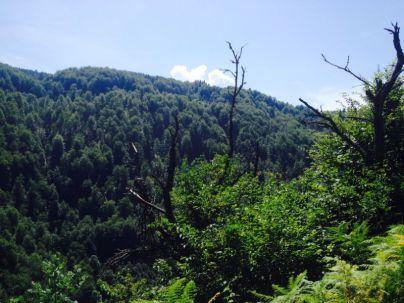 Jajce-Mountain-Travnik28