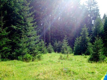 Jajce-Mountain-Travnik38