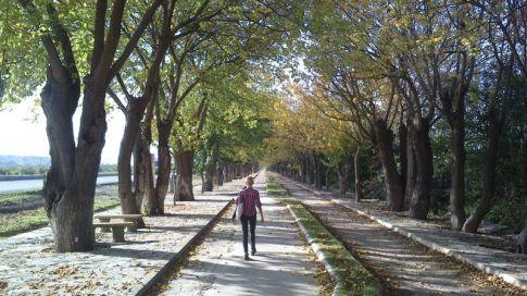 road to Ephesus