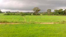 Kalpitiya_Anuradhapura098