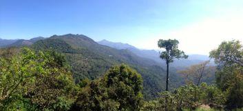 Kerala019