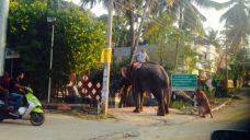 Kerala050