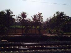 Kerala097