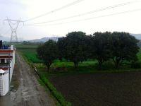..in rain