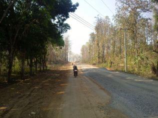 no traffic means walking