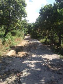 motorbike trail