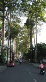 HCMC-1st-days-088