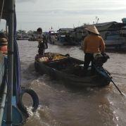 Mekong-Delta-100