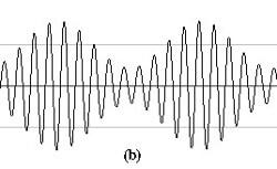 fig1b (1)