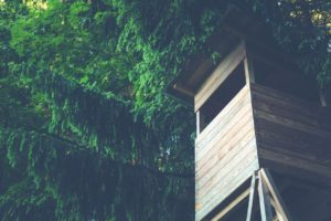 A wooden tree house