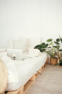 A white mattress and bedding on a light wood pallet with a big house plant