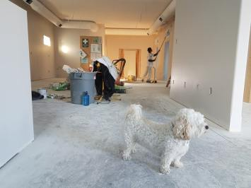 Person remodeling an apartment