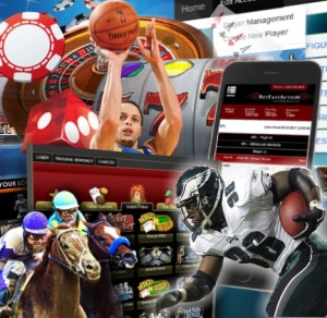 A Flexible and Efficient Bookie Betting Software Solution