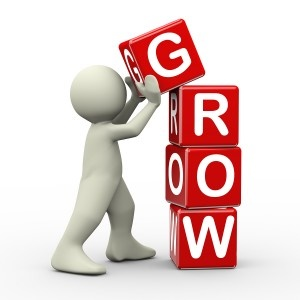 Grow Your Bookie Business with a Pay Per Head Provider