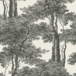 RAS143-Passepartout-Trees-Wallaper-Black-White-EA