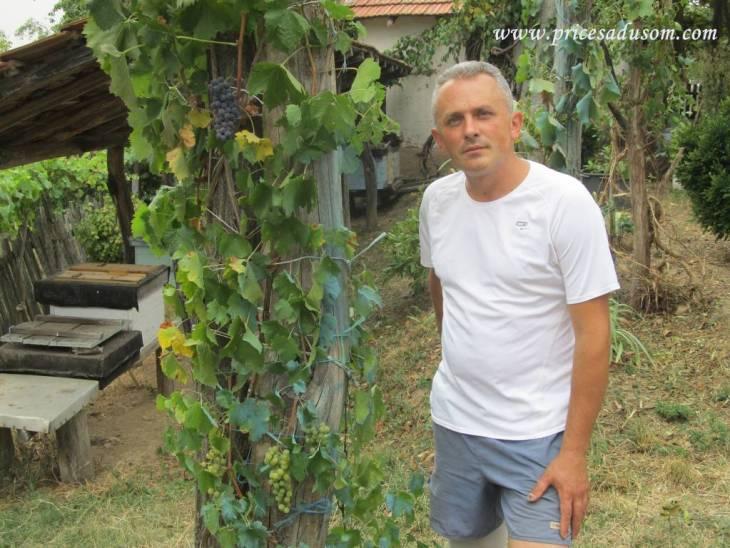 Zoran Ilic Lipovica 2_1024x768