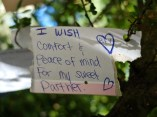 wish-tree-4