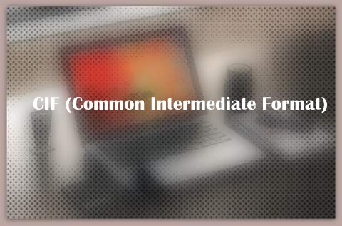 CIF (Common Intermediate Format)