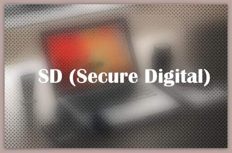 SD (Secure Digital)