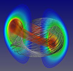 Tokamak magnetic field lines (source)