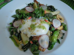 Purslane salad with soft boiled egg