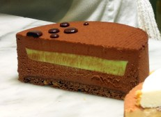 Cross sectional view