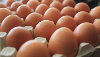 Uvodi se nova oznaka na jajima, pogledajte što će točno predstavljati