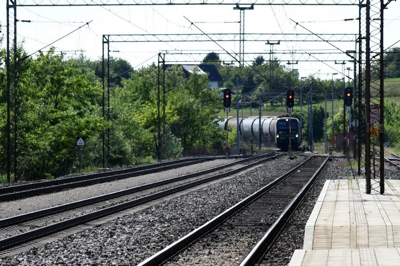 Šišmiš, žaba i strizibuba zaustavili gradnju pruge za Mađarsku vrijedne milijardu eura