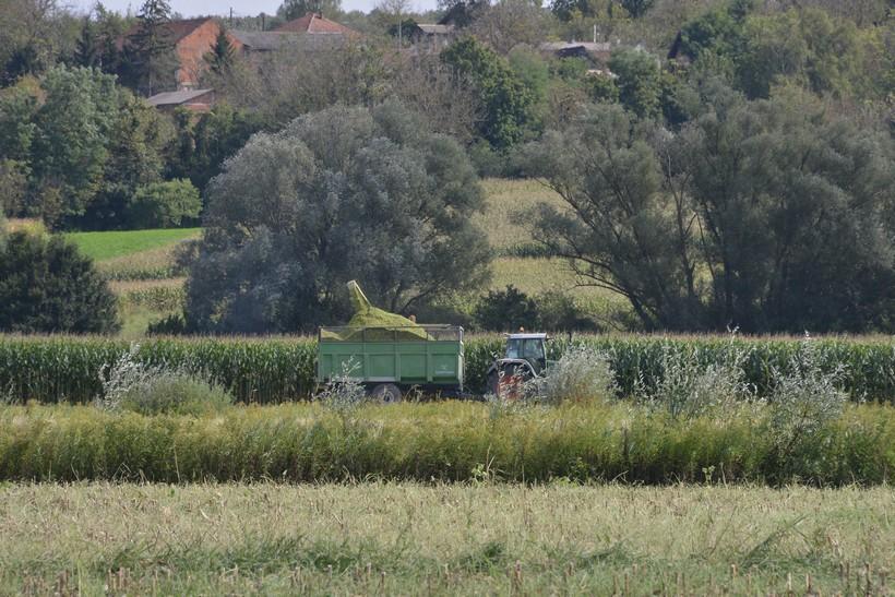 Grad Križevci: Legitimno je raskinut ugovor o zakupu zemljišta s OPG-om Igor Novosel