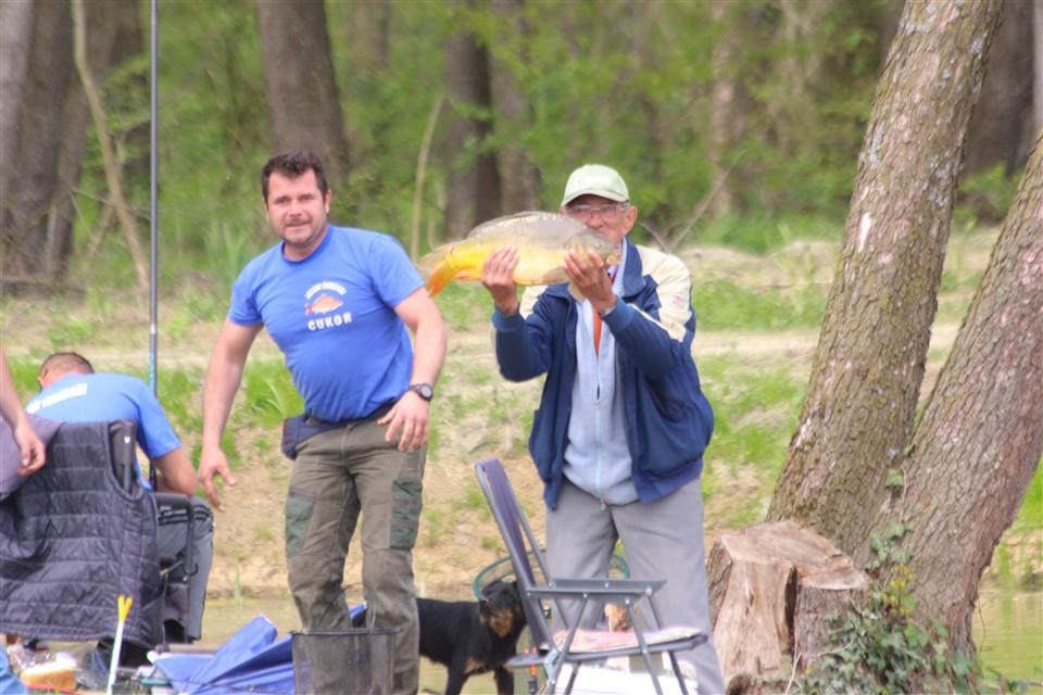 ribolov ceredari - 35